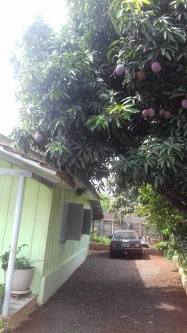 Vendo Terreno com casa Rua Paraná 462,5m² próximo a Prefeitura - Foto 7