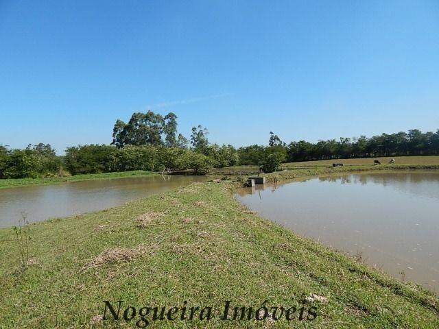 Sítio com 4 lagos, excelente para pesqueiro (Nogueira Imóveis Rurais) - Foto 7