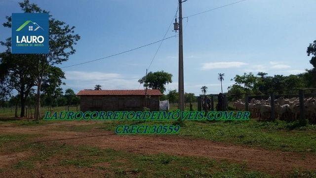 Fazenda Coração de Jesus com 1.000 hectares - Foto 2