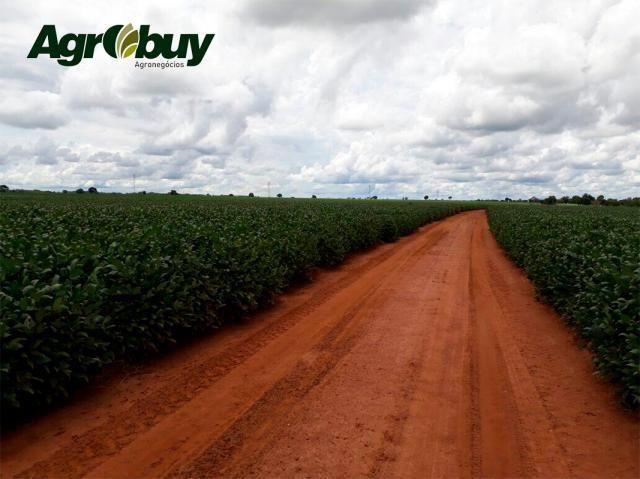 Fazenda Localizada em Alvorada - to - Foto 6