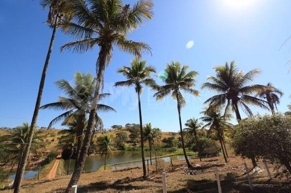 Rural fazenda - Bairro Setor Central em Goianira - Foto 5