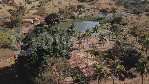 Rural fazenda - Bairro Setor Central em Goianira - Foto 6
