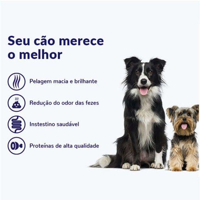 Ração Seca Nutrilus Pro Frango & Carne para Cães Adultos Premium Especial: 15kg - Foto 2