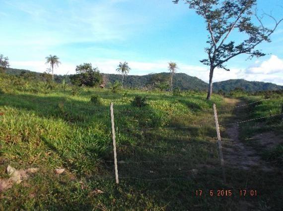 Fazenda de 400 hectares