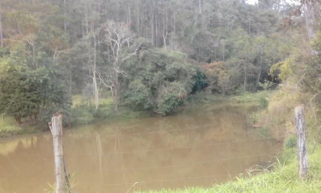 Sitio rico em água com cachoeiras, rios e lagos de piscina naturais, leia anúncio!!! - Foto 14
