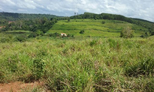 36 hectares na região pingo dagua - Foto 10