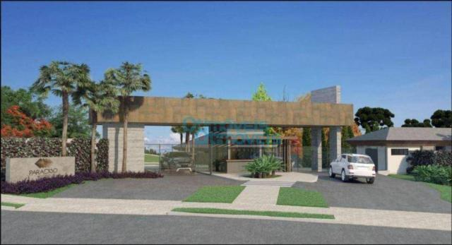 Terreno à venda, 3693 m² por r$ 1.124.222 - augusta - curitiba/pr - Foto 2
