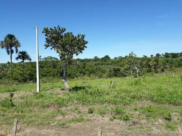 Fazenda c/ 620he, plantando em 200he, 240he em pastagens, Itiquira-MT - Foto 8