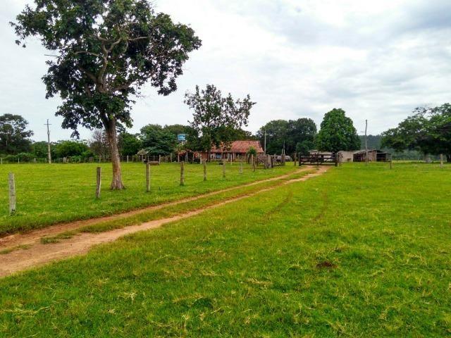 Fazenda com 686he, c/ 350He formado, terra boa, 30km antes Guiratinga-MT - Foto 11