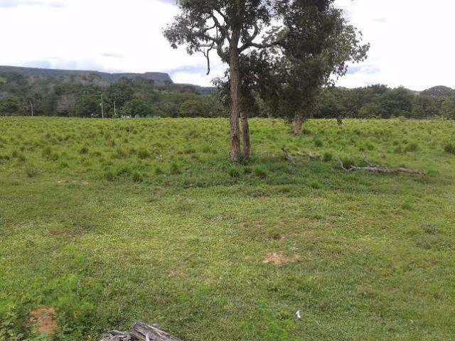 Fazenda c/ 840he c/ aprox. 400he formado, c/ GEO, Guiratinga-MT - Foto 10