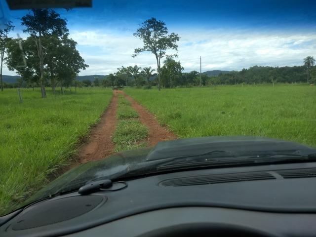 Fazenda com 200he, c/ 50% formado, terra de cultura, 40km de Cuiabá-MT
