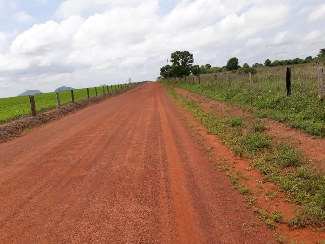 Fazenda 2.527 Hectares Plantando Lavoura - Grande Oportunidade - MT - Foto 3