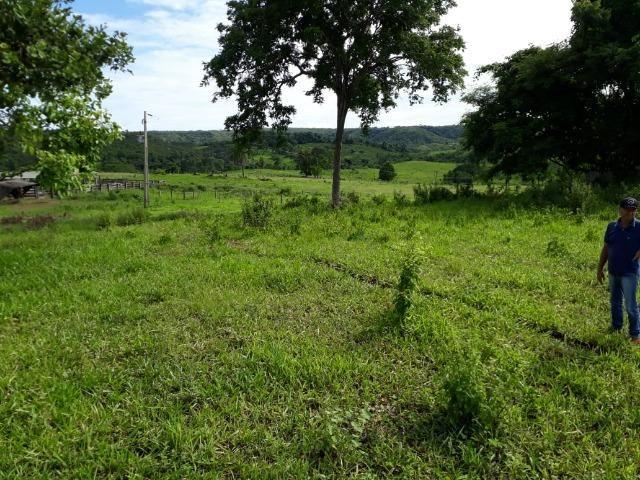Fazenda c/ 912he, 550he formados, Terra boa, Itiquira-MT - Foto 20
