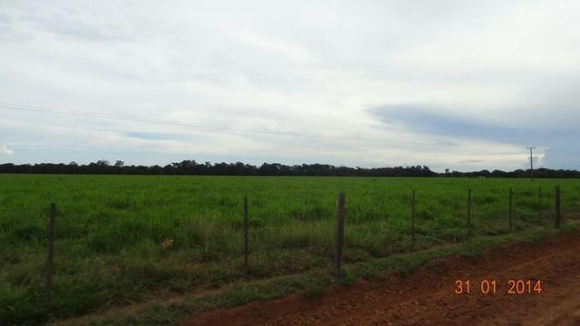 Fazenda c/ 4.500he, C/ 80% aberto, parte faz lavoura, Nova Xavantina-MT - Foto 2