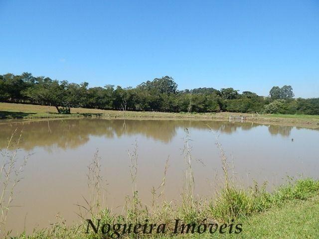 Sítio com 4 lagos, excelente para pesqueiro (Nogueira Imóveis Rurais) - Foto 9