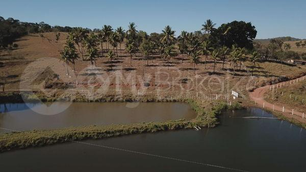 Rural fazenda - Bairro Setor Central em Goianira - Foto 8