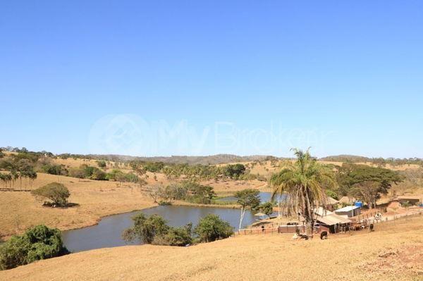 Rural fazenda - Bairro Setor Central em Goianira - Foto 10
