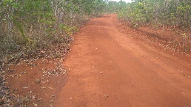 Fazenda 226 alqueires em São Valério