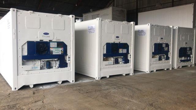 Container Refrigerado - Foto 2