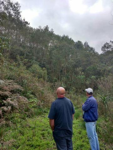Chácara 12 km do centro de Bocaiúva - Foto 6