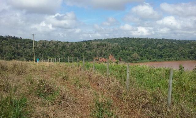 36 hectares na região pingo dagua - Foto 9