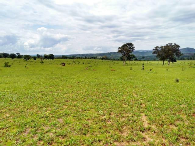 Fazenda com 686he, c/ 350He formado, terra boa, 30km antes Guiratinga-MT