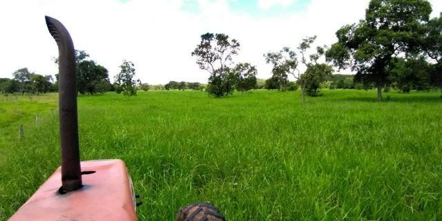 Fazenda com 686he, c/ 350He formado, terra boa, 30km antes Guiratinga-MT - Foto 4