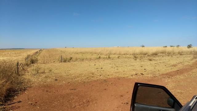 Fazenda c/ 1.700he c/ 80% formados, dupla aptidão, Itiquira-MT, pego 50% em imóvel no PR - Foto 16