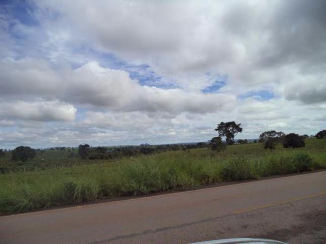 Fazenda c/ 3.480he c/ 80% formada, as margens da BR, Rondonópolis-MT - Foto 8