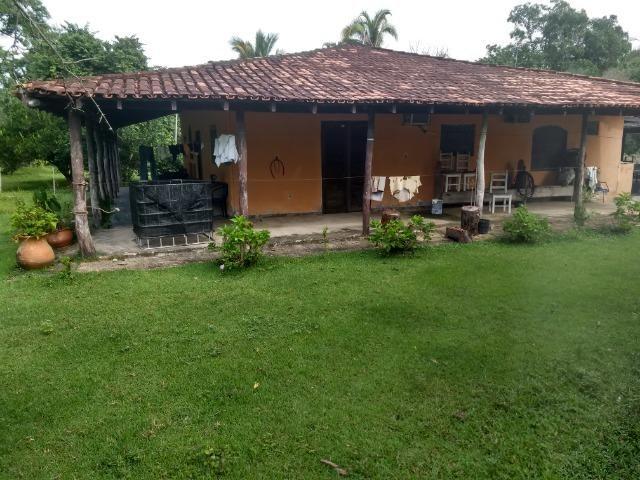 Fazenda com 200he, c/ 50% formado, terra de cultura, 40km de Cuiabá-MT - Foto 15