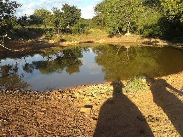 Fazenda c/ 500he c/ 315he formado, a 50km de Cuiabá-MT - Foto 12
