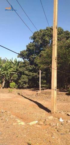 Chácara à venda por R$450.000 - Bairro São Lourenço - Anápolis/GO - Foto 9