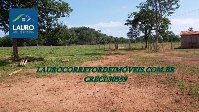 Fazenda Coração de Jesus com 1.000 hectares - Foto 3