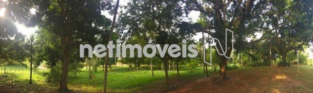 Sítio à venda com 4 dormitórios em Jauá, Camaçari cod:776377 - Foto 6
