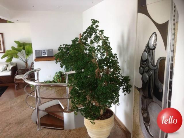 Apartamento à venda com 3 dormitórios em Mooca, São paulo cod:197186 - Foto 13