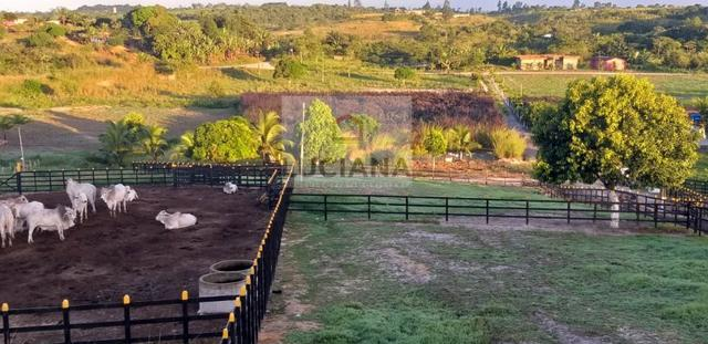 Fazenda em Bonança com 20 hectares (Cód.: 123que) - Foto 2