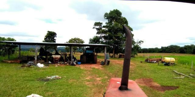 Fazenda com 686he, c/ 350He formado, terra boa, 30km antes Guiratinga-MT - Foto 6