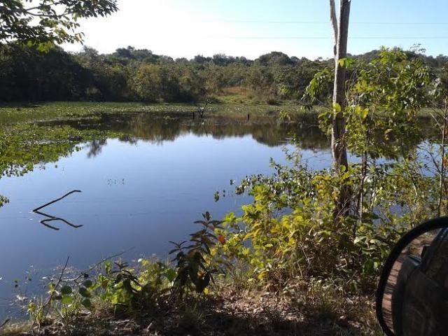 Fazenda com 1.000he c/ 80% formado, 50km de Cuiabá - Foto 4