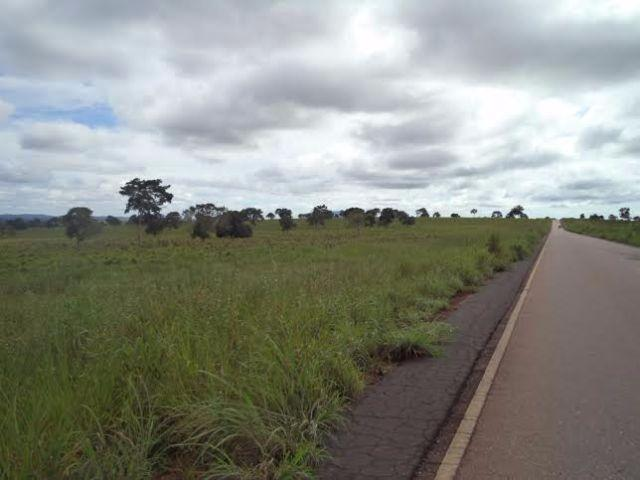 Fazenda c/ 3.480he c/ 80% formada, as margens da BR, Rondonópolis-MT - Foto 3