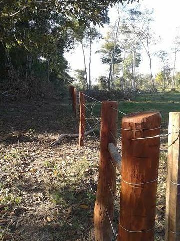 Fazenda c/ 500he c/ 315he formado, a 50km de Cuiabá-MT - Foto 3