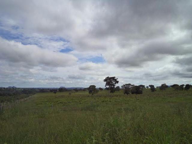 Fazenda c/ 3.480he c/ 80% formada, as margens da BR, Rondonópolis-MT - Foto 2