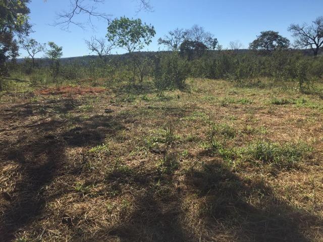 Fazenda c/ 570he, c/ 90% aberto/juquirado, 8km de Itiquira-MT, entrada + 4 parcelas - Foto 8