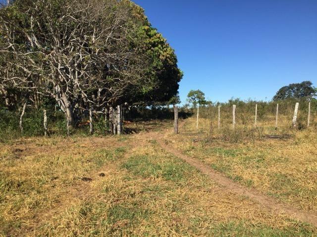 Fazenda c/ 570he, c/ 90% aberto/juquirado, 8km de Itiquira-MT, entrada + 4 parcelas - Foto 13