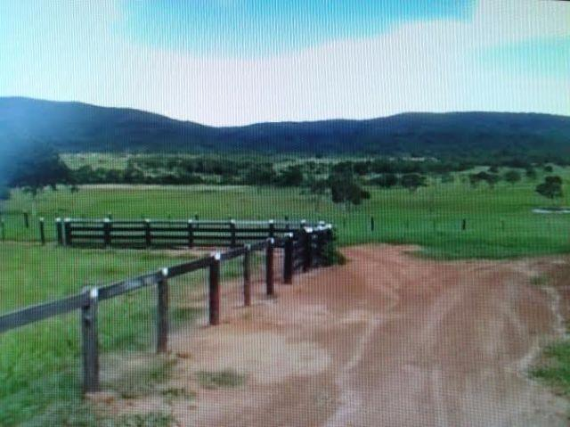 Fazenda c/ 1.098he c/ 80% formado, a 5km da BR, Caceres-MT