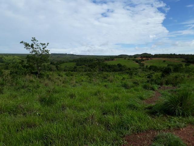 Fazenda c/ 912he, 550he formados, Terra boa, Itiquira-MT - Foto 10