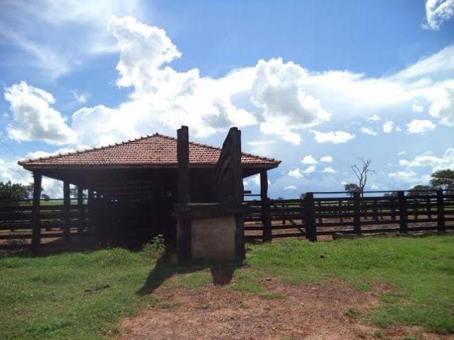 Fazenda c/ 3.480he c/ 80% formada, as margens da BR, Rondonópolis-MT - Foto 12