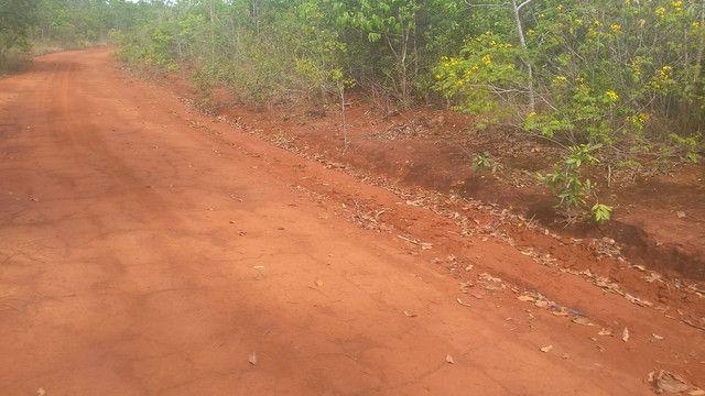 Fazenda 226 alqueires em São Valério - Foto 5