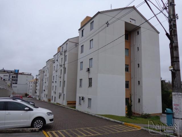 Apartamento para alugar com 2 dormitórios em Hamburgo velho, Novo hamburgo cod:2831