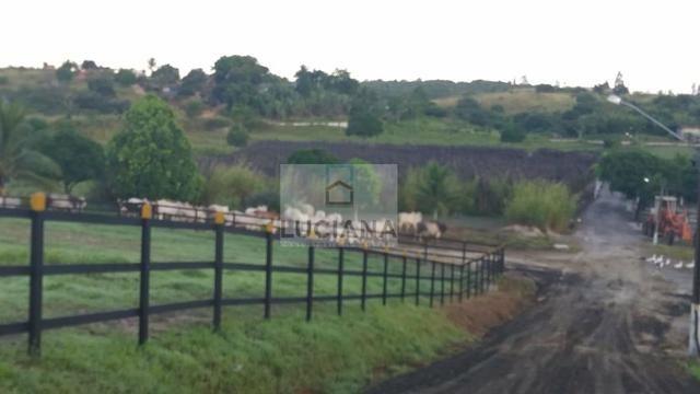 Fazenda em Bonança com 20 hectares (Cód.: 123que) - Foto 3