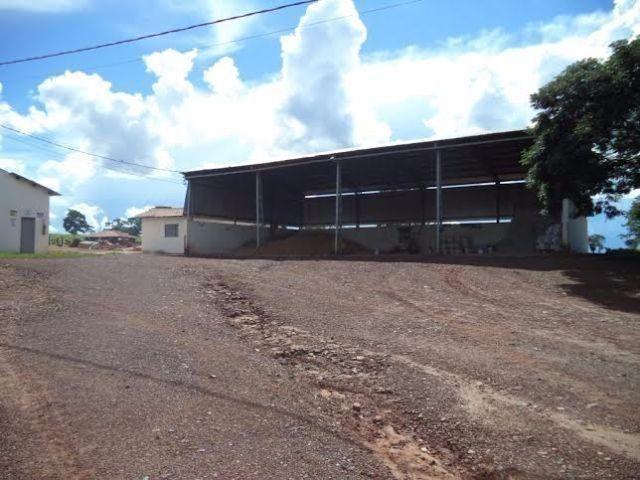 Fazenda c/ 3.480he c/ 80% formada, as margens da BR, Rondonópolis-MT - Foto 14